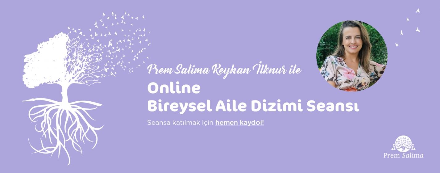 online-bireysel-aile-dizimi-seansi